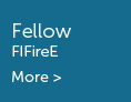 Fellow